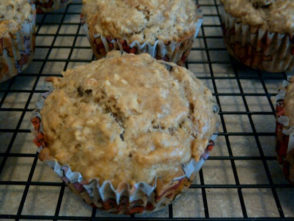Vegan Apple Cranberry Oatmeal Muffins | Twin from Scratch